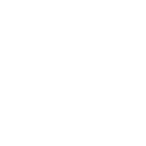 Travelgingers