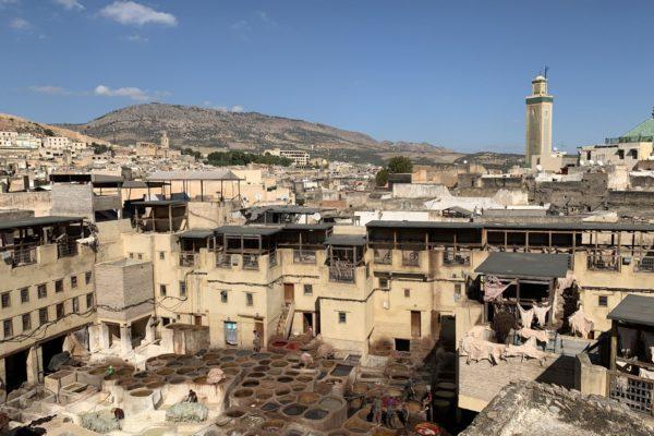 Overview medina